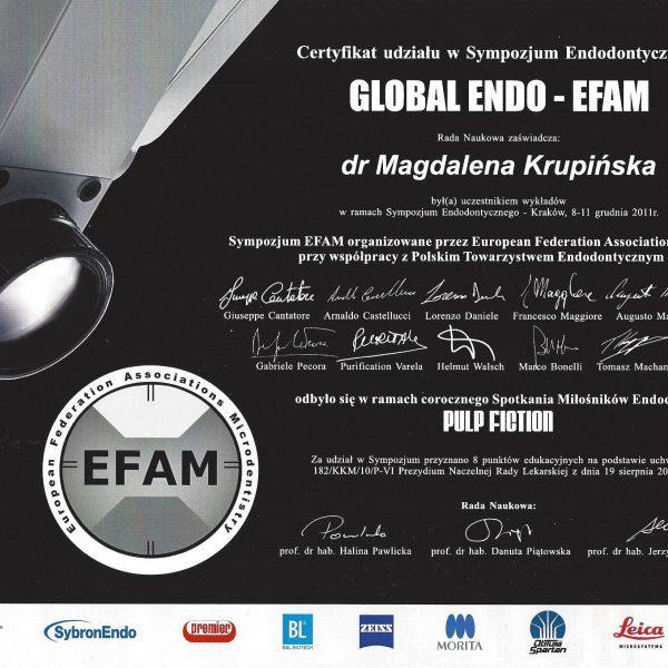 certyfikat udziału w sympozjum endodontycznym