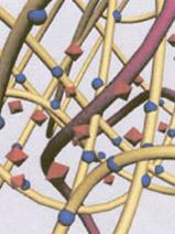bogatopłytkowa fibryna