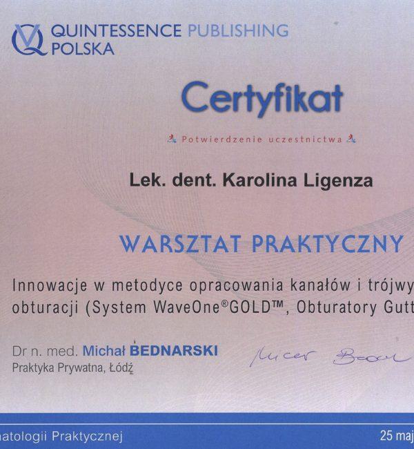certyfikat z warsztatu praktycznego